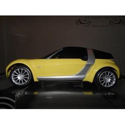 Nikko R/C Smart Roadster...
