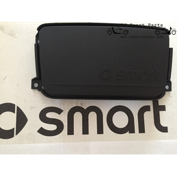 OEM Smart ForTwo 451 radio space ornamental cover molding