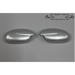 Smart Roadster mirror cover...