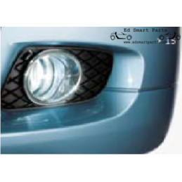 Chrome Fog light rings,...