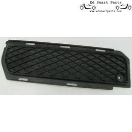 Smart Roadster rear  grille...